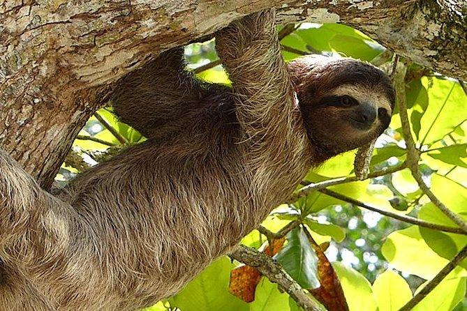 Paisajes exóticos de Costa Rica