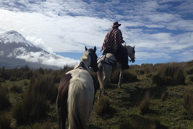 5-Day Adventure in The Andes and the Amazon from Quito