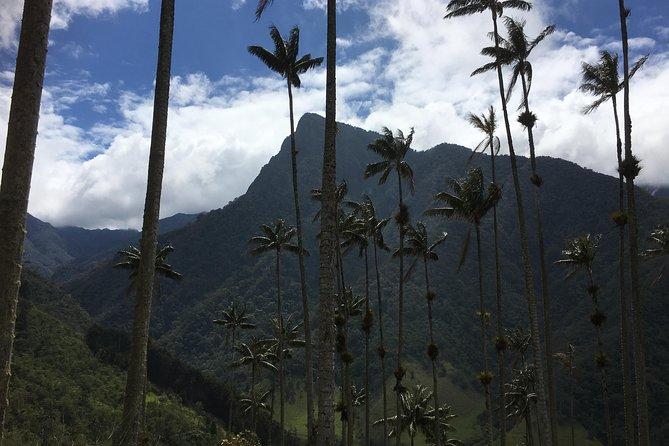 3-Day Colombian Coffee Region