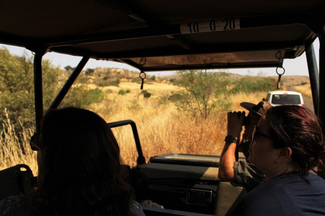 2 Day 4 Star Pilanesberg Safari photo 3
