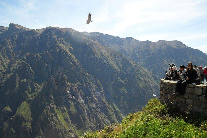 11-Day Semi-Private Tour: Cusco, Machu Picchu, Lake Titcaca and Colca Canyon