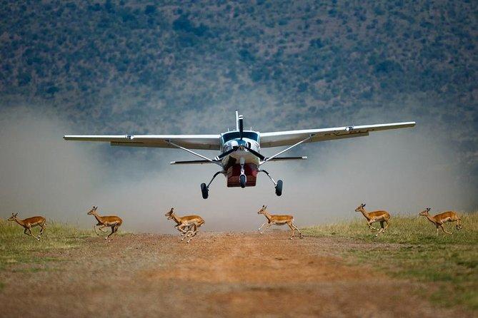 3-Day Masai Mara Flying Luxury Lodge Private Safari
