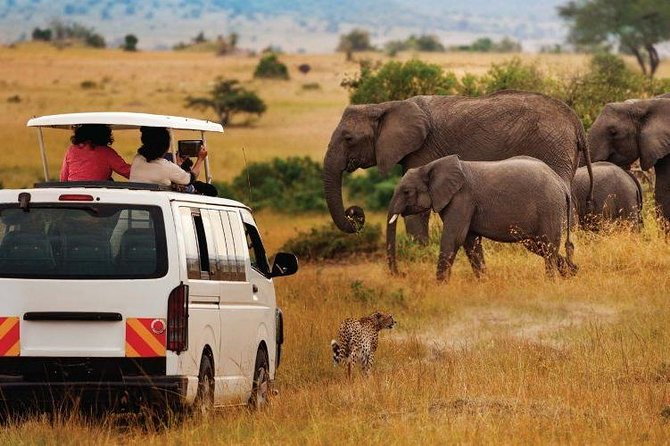 8-Days Tsavo East, Amboseli, Naivasha & Masai Mara Private Safari From Mombasa