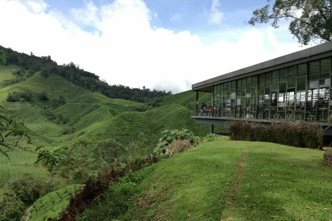 2 Days 1 Night Cameron Highlands Tour - Nature & Forest