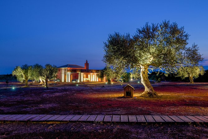 8 day Cooking & Culinary Holiday in Laconia, Greece