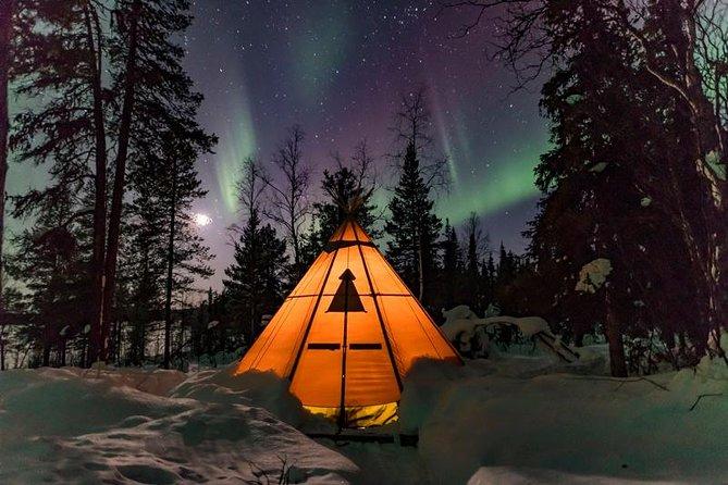 Nordlys og dyreliv i svenske Lappland