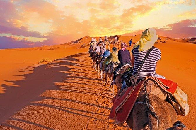 Overnight Camel Trekking in Sahara Desert Merzouga