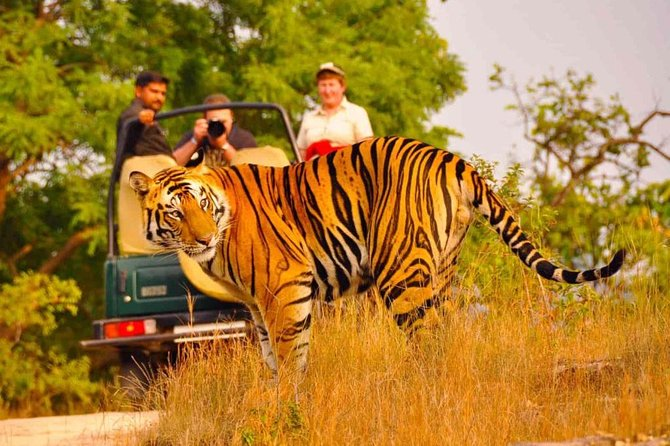 5 Days Golden Triangle Tour with Ranthambore Delhi Agra Jaipur