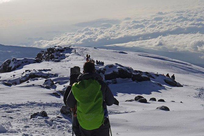 Climb Mount Kilimanjaro: 7 Days Machame Route