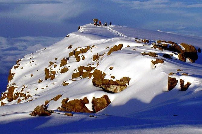 Seven Day Mount Kilimanjaro Climb on Rongai Route from Moshi
