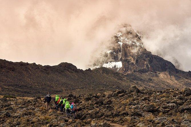 Climb Mount Kilimanjaro: 8 Days Lemosho Route