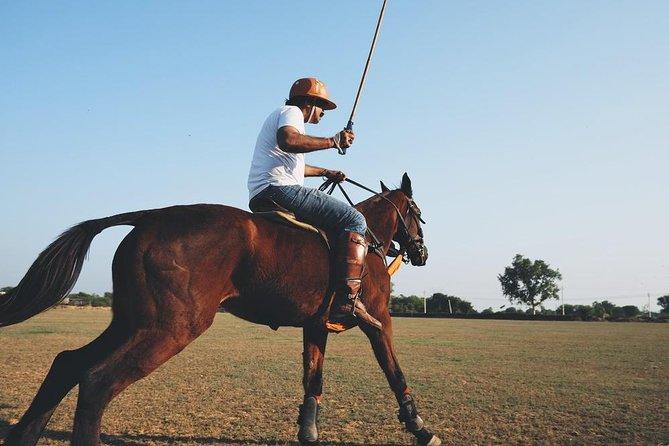 Short Rajasthan Polo tour from Delhi