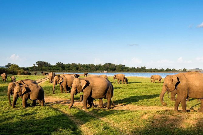 Experience Sri Lanka - Hotels Included