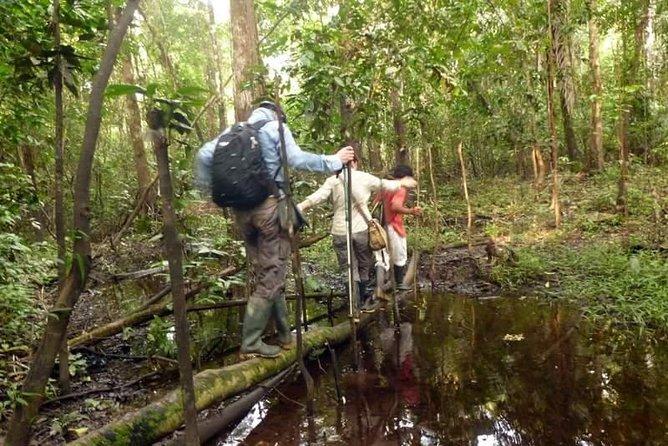 2-daagse natuurobservatie in het Pacaya Samiria National Reserve