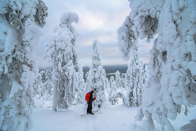 7-day best winter activities in Kuusamo
