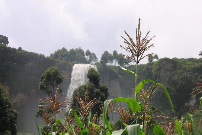3 Days Safar to Sipi Falls