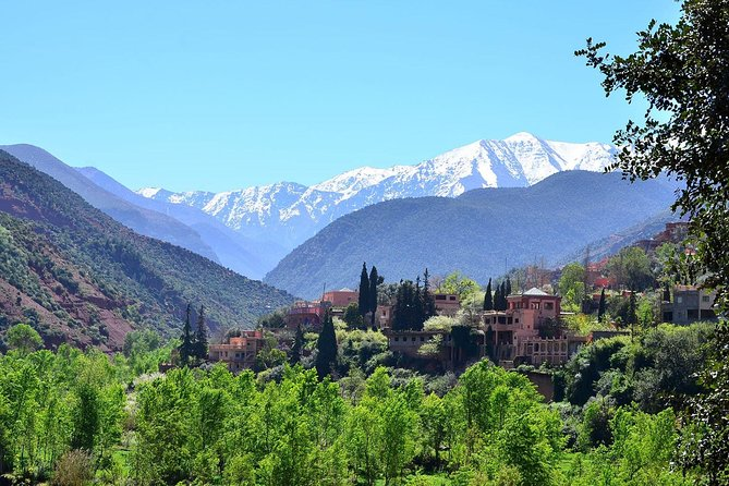 Top Excursions: Full Day Trip To Ourika Valley and Atlas from Marrakech