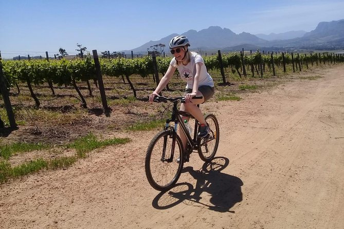 Stellenbosch Winelands Guided Luxury Cycle Tour photo 2