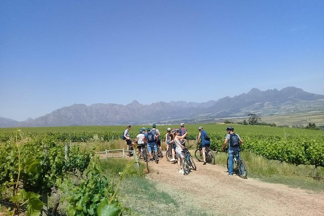 Stellenbosch Winelands Guided Luxury Cycle Tour photo 7