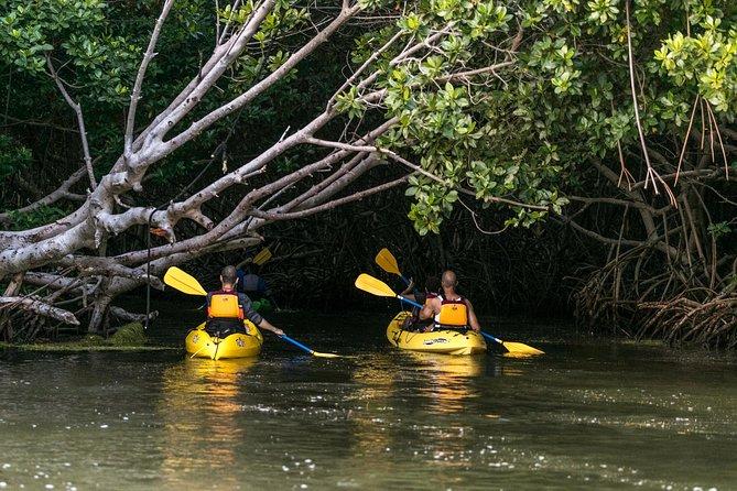 Bioluminescent Bay Night Kayaking Tour 5:30pm | Laguna Grande, Fajardo