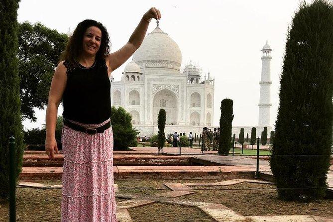 Pickup New Delhi e visita a Tajmahal & Wildlife SOS agra com transporte privado