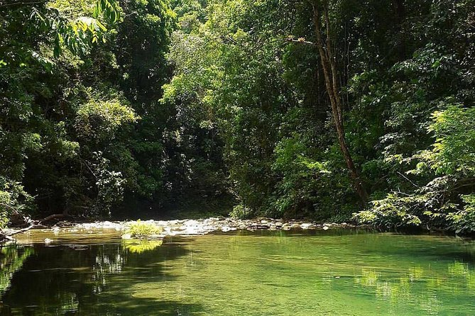 Magical Mermaid Pool and Caroni Swamp
