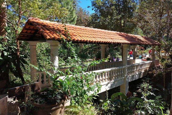 Botanical Delights Tour & Culinary Adventure