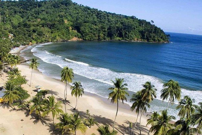 Maracas Beach Tour