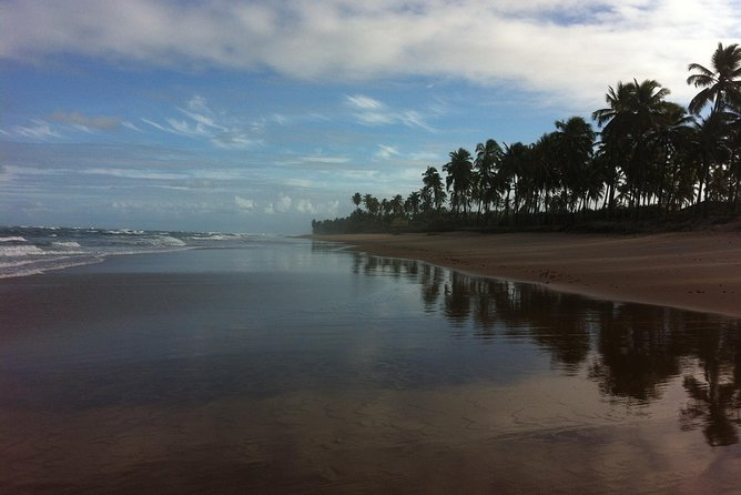 Salvadors north coast abd chapada diamantina