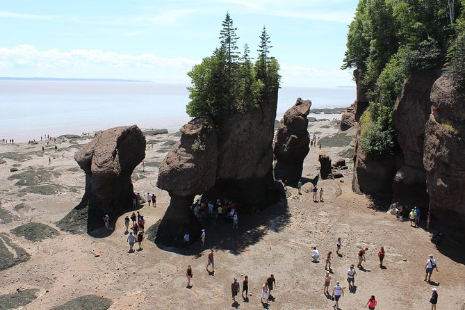 Private Full-Day Tour to Hopewell Rocks from Saint John
