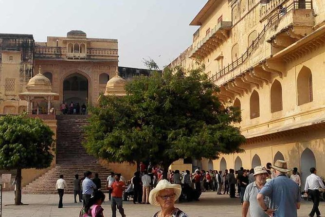 Private Guided: 3 Night 4 Day Golden Triangle Tour by Car