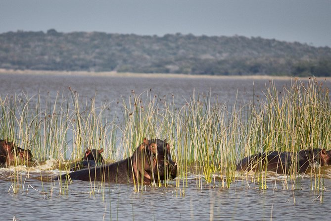 2-Day Maputo Special Reserve Guided Tour