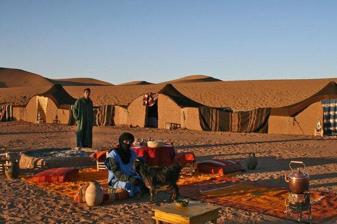 Excursión de dos días desde Marrakech a Zagora, con campamento en el desierto y paseo en camello