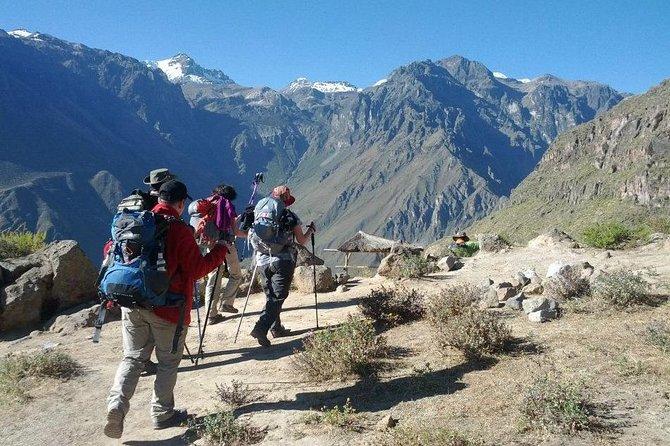 2-Day Custom Colca Canyon Trek from Arequipa