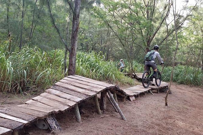 Mountain Biking North Shore Trails
