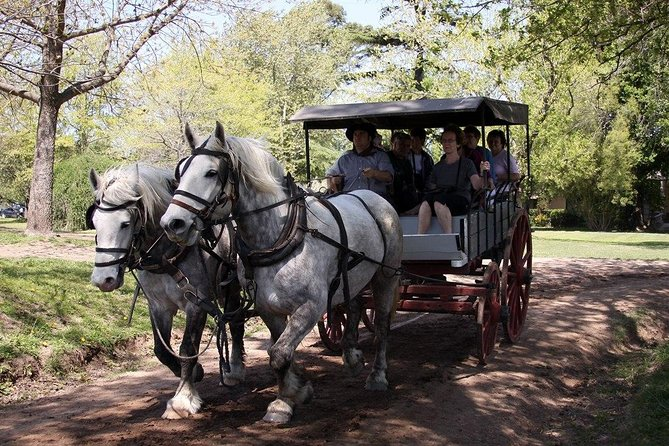 Private GAUCHO TOUR - FULL DAY TRIP Guided in EN, SPA or FR - Argentina