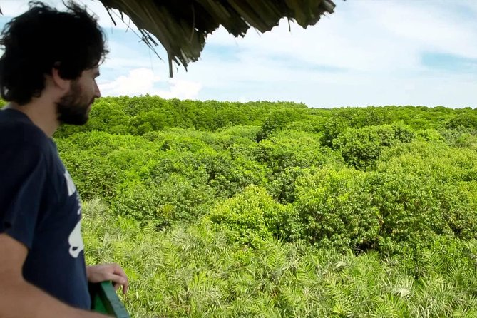 Can Gio Mangrove Forest and Rung Sac Adventure Tour from Ho Chi Minh City
