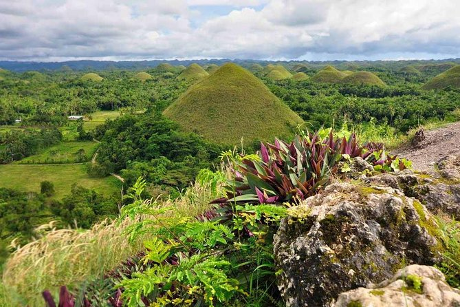 Bohol Countryside Tour from Cebu