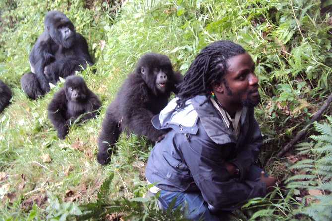 3 Days Gorilla Hiking Safari To Bwindi Impenetrable Forest Park photo 18