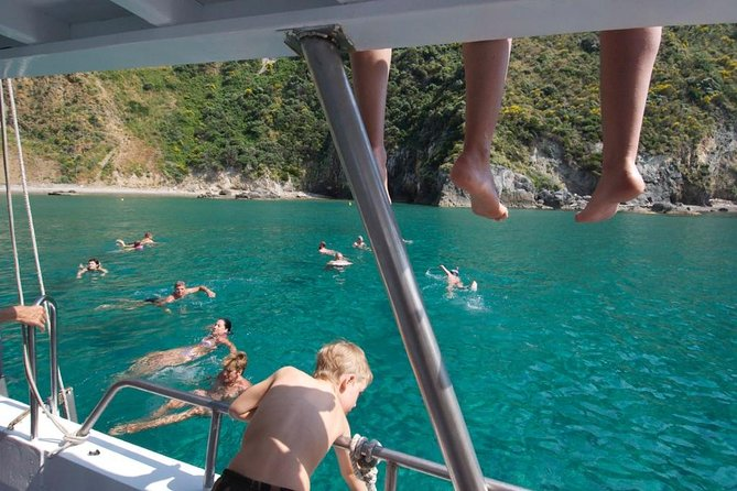 Ponza Island Day Trip from Rome
