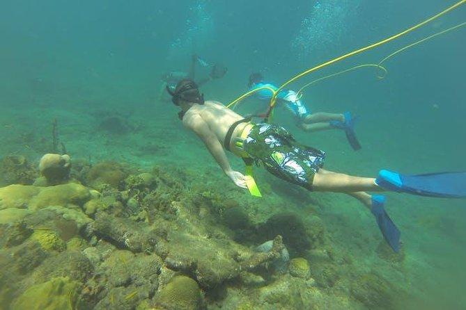 OCTOPUS DIVING (hookah diving) NO Experience Needed