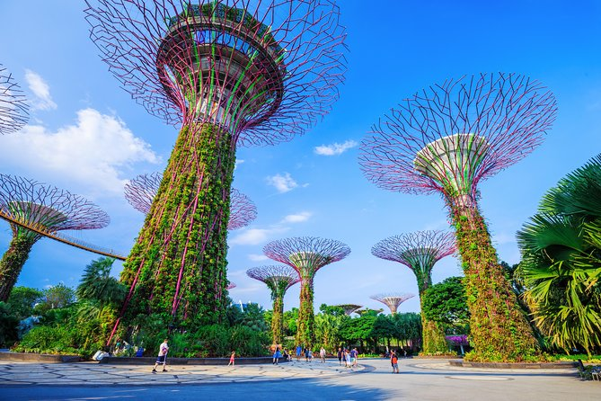 A Full Day In Singapore With A Local: Private & Personalized