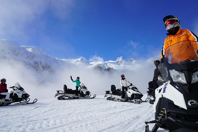 2 Hour Wilderness Adventure Snowmobile Tour