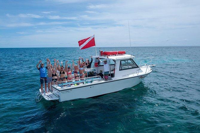 Snorkeling the Beautiful Reefs of Key Largo