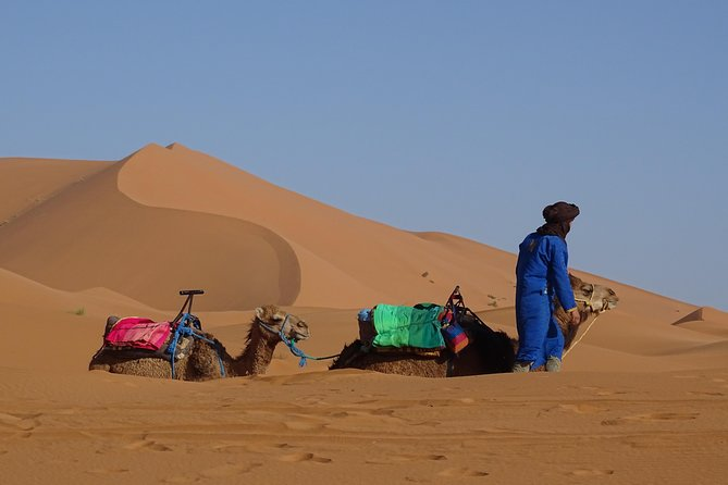 3 Days Private Tour South Morocco from Marrakech to Fes
