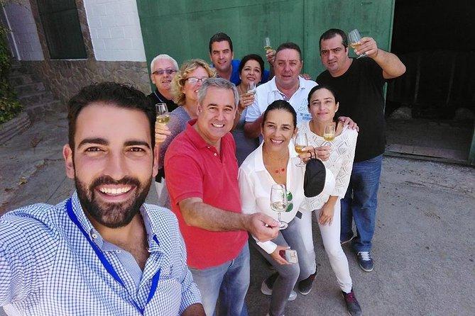 Jerez Wine Cellar private Tour and Tasting