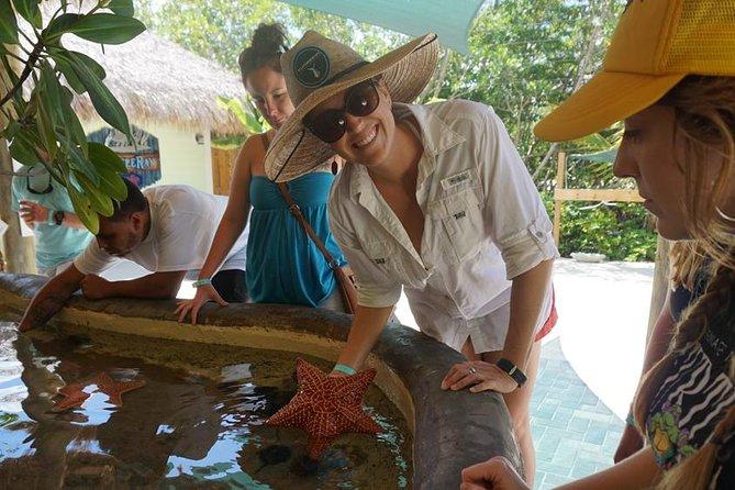 Full-Day Tour to Florida Keys Aquarium Encounters from Key West