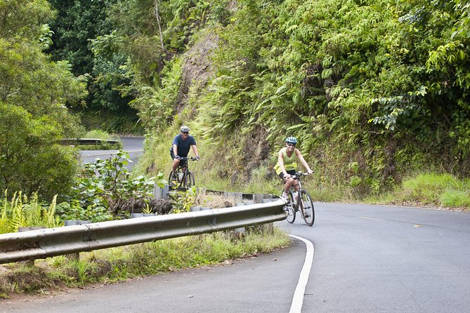 Honolulu Downhill Bike Tour with Optional Hike