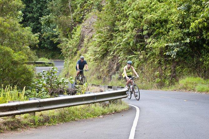 Honolulu Downhill Bike and Waterfall Hike Tour