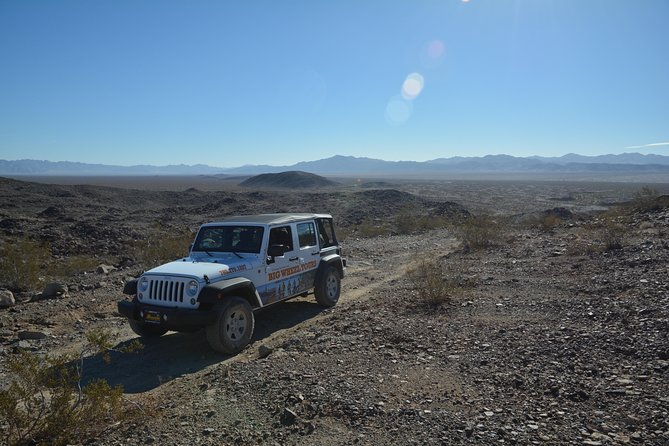 Half-Day Joshua Tree National Park Jeep Tour